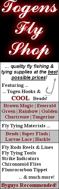Togens Fly Shop (200X600)