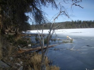Frisken lake early April - Ice still on!