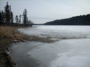 Roche lake early April - Ice still on!