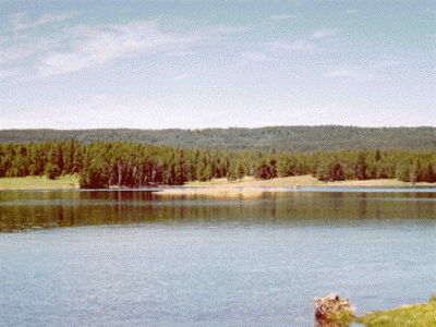 Tunkwa Lake Park BC Fishing Vacation ... perfect for your next BC interior fishing holiday!