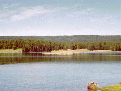 Tunkwa Lake Park BC Fishing Vacation ... perfect for your next BC interior fishing holiday!