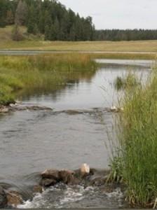 Tunkwa Lake Park BC Fishing Vacation - Tunkwa/Leighton Spillway