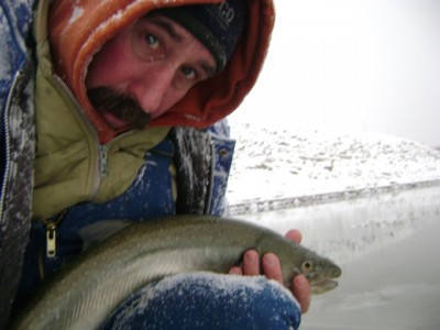 ....... very nice fish!