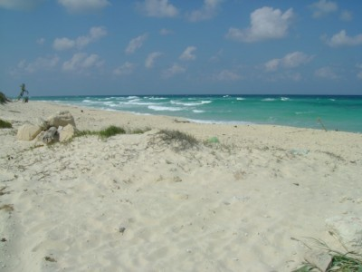 ... the Caribbean Sea