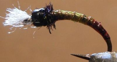 ... bleeding limey chironomid fly pattern