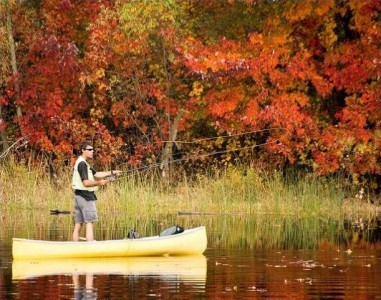 Fall Fly Fishing Strategies