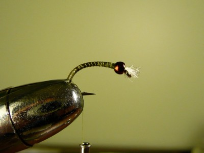 Major General ASB Chironomid Fly