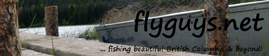 flyguys.net | fly fishing British Columbia & beyond!