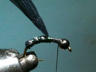 Combo Nymph River Fly Pattern ... pull over & tie down the rafia!