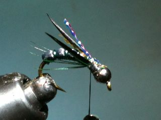 Combo Nymph River Fly Pattern ... tie on the goose bigots!