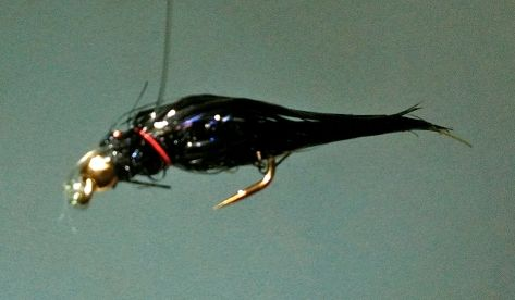Bipolar Balanced Leech Fly ... Balanced mode!