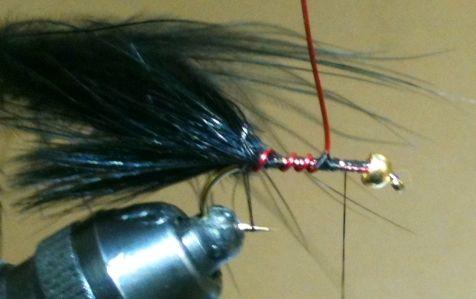 Bipolar Balanced Leech Fly