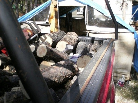 A Wonderful Whitetail Lake Fishing Vacation ... woodpile