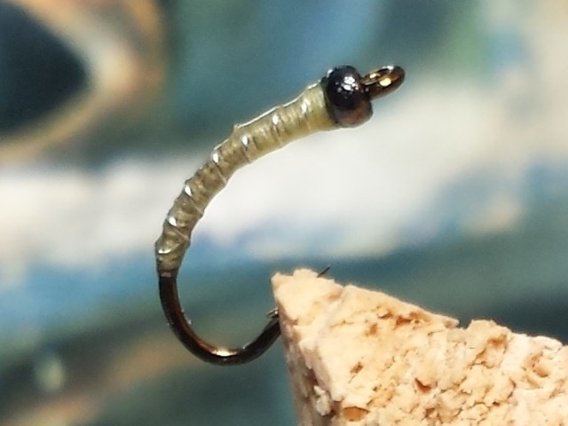 Fly Fishing Chaoborus Glassworms ... chaoborus pupa fly | flyguys.net