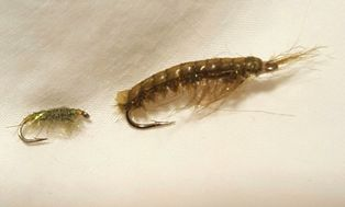 Early Spring FlyFishing StrategiesHyalella & Gammarus Shrimp Fly Patterns
