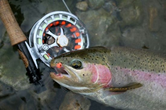 Hill People Gear Connor Pack Fly Fishing Rainbow Trout