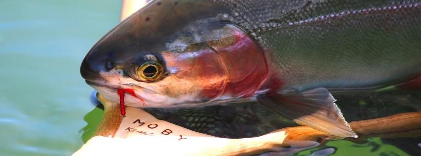MOBY Kamloops Trophy Fly Fishing Net
