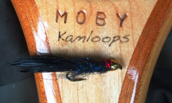 Fall Fishing Report - MOBYnet Leech