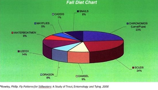 Fly Fishing Diet Chart - Fall fly patterns