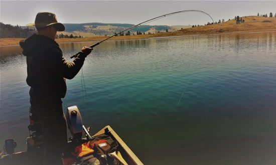 Fly Fishing Tips That Will Make You a Better Fisher