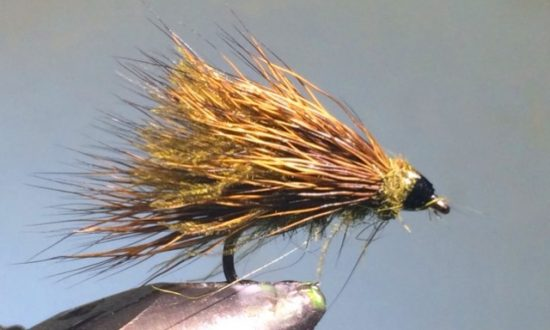 CDC Sedgehog Caddis Adult Fly Pattern