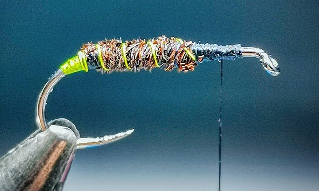Green Haze Soft Hackle Caddis Pupa step 2