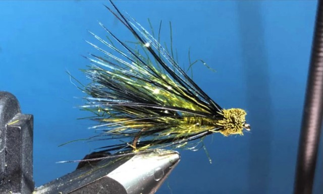 ... the Muddled Leech fly pattern!