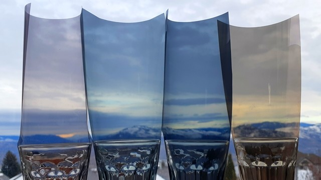 Church Window Chironomid - Window Tint Shades