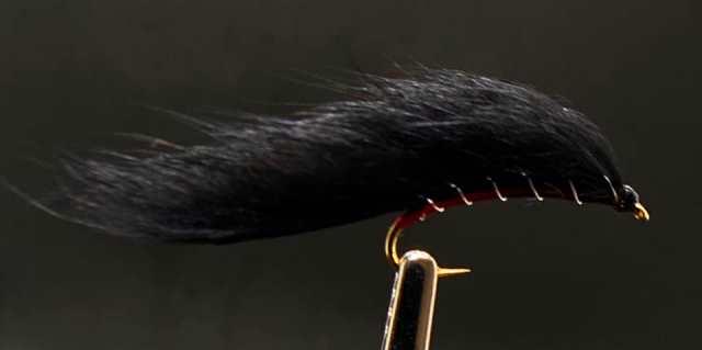Strip Leech - Black
