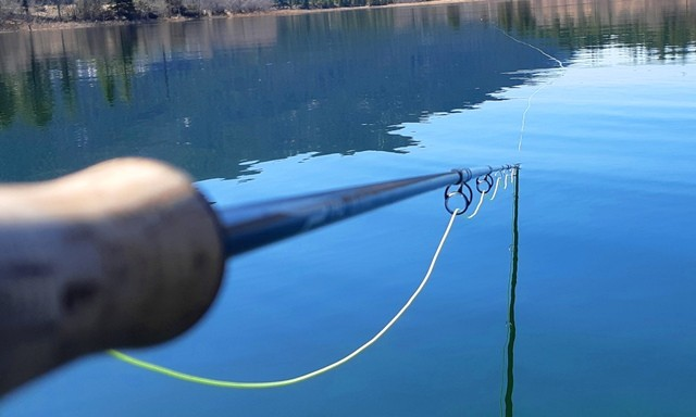 TFO Special Delivery Plus Floating Fly Line Review